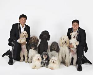 the-olate-dogs-11-4-16